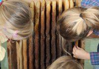 Evangelische-Grundschule-Projekt-1
