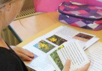 Evangelische-Grundschule-Projekt-4